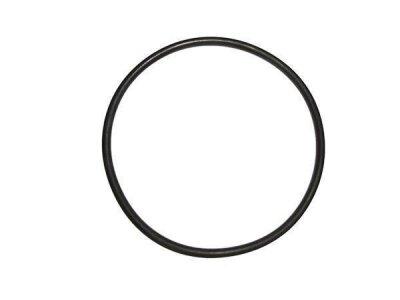 O-Ring für Heizkörper aus V2A LaPavoni
